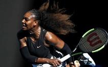 Thắng dễLucic-Baroni, Serena gặp cô chị Venus ở CK Úc mở rộng