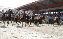 Bình Dương khởi động giải đua ngựa đầu tiên