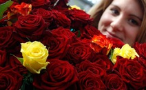 Lễ Tình yêu Valentine: Đức tặng tượng heo, Na Uy tặng chim