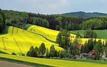 Ghé qua nước Đức