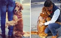 Ngộ nghĩnh cô chó gặp người là ôm