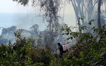 Bắt quả tang 2 người đốt phá, lấn chiếm đất rừng Phú Quốc
