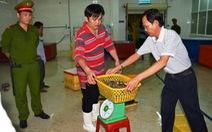 Tăng giám sát để ngăn thực phẩm bẩn