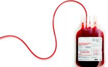 """Nhiều người tham gia chương trình """"Cặp đôi hiến máu"""""""