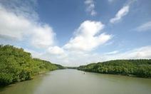 Phát triển Cần Giờ thành điểm du lịch sinh thái nghỉ dưỡng