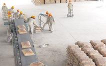 Sản xuất xi măng và nỗi lo cung-cầu