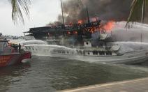 Cấm sáu tàu du lịch hoạt động trên vịnh Hạ Long