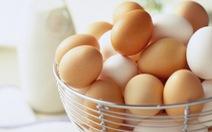Hạn ngạch thuế quan nhập khẩu trứng gia cầm và muối năm 2017