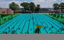 Mỗi bể bơi có hàng chục lít nước tiểu