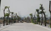 Sân bay Nha Trang sẽ trở thành khu phức hợp tầm cỡ quốc tế