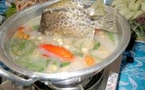 Về Bạc Liêu nhớ ăn cá nâu nấu mẻ