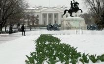 Bị bắt sau 16 phút leo rào vào Nhà Trắng