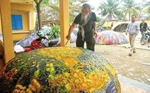 Du lịch cộng đồng ở Tam Thanh