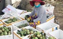 Thị trường rau củ, trái cây có nhiều biến động