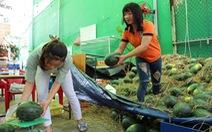 Sinh viên Nha Trang 'giải cứu' dưa Quảng Ngãi