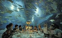 Audio 7-4:Biển Trung Quốc sắp hết cá