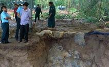 Phát hiện hố chôn tập thể liệt sĩ tại sân bay Biên Hòa
