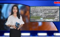 Tin nóng 24h:Báo động nông dân bán đất mặt ruộng