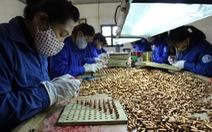 Ở thung lũng sản xuất đạn