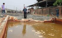 Gây ô nhiễm, công ty giáp ranh Quảng Nam-Đà Nẵng bị phạt nặng