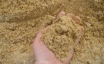 Giả công văn tỉnh hợp thức hóa nguồn cát