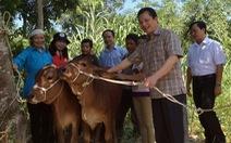 'Ngân hàng bò' không nợ xấu của ĐBQH Bùi Sỹ Lợi