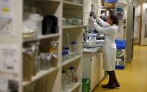 Đã loại bỏ được virút HIV trong tế bào người cấy trên chuột