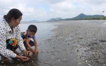Hãy nghĩ đến một vùng biển sạch