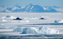Trái đất nóng lên khiến Nam Cực 'bớt trắng'