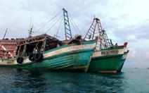 Bắt nhiều tàu chở dầu lậu trên biển