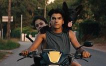 Cannes trao giải Cành Cọ cho diễn viên…chó