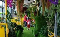 Đài Loan thử nghiệm 'xe buýt rừng xanh'