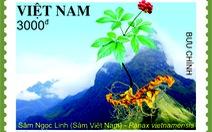 Phát hành bộ tem sâm Ngọc Linh trên 168 nước