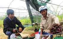 Kỹ sư Trung và vườn rau 'xấu lá, giá cao'