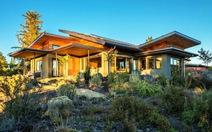 Cặp đôi dành nhiều năm trời xây 'ngôi nhà xanh' mơ ước