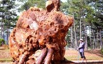 Tảng đá bán quý 20 tấn trưng bày tại Lang Bian