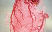 Hiểu sao cho đúng về suy tim?