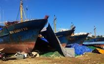 Cần khởi tố điều tra 2 dấu hiệu sai phạm vụ tàu vỏ thép