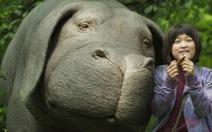 Okja: bộ phim không chỉ dành cho người yêu động vật