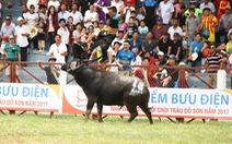 Lễ hội và bạo lực