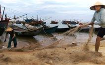 Sắp công bố hải sản tầng đáy miền trung an toàn