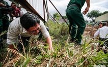 Khảo sát khu vực nghi có hố chôn liệt sĩ ở Tân Sơn Nhất