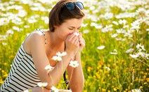 Viêm mũi dị ứng và hen: những điều cần lưu ý
