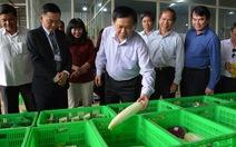 Tái cơ cấu nông nghiệp phải gắn với hợp tác xã