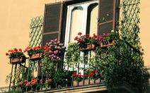 Lô gia - điểm nhấn trong phong cách thiết kế chung cư hiện đại