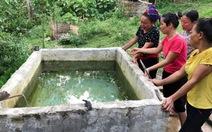 Hai trẻ mầm non chết đuối trong bể nước của gia đình