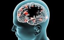 Nghiên cứu mới phát hiện nguồn gốc biến đối tế bào ở bệnh Alzheimer