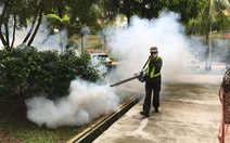 Singapore: Phạt nặng người dân để lăng quăng nảy nở