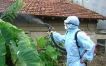 Nhận diện muỗi truyền sốt xuất huyết
