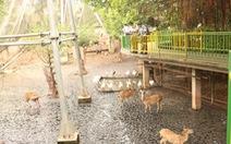 Đầu tư để môi trường sống các vườn thú phong phú hơn